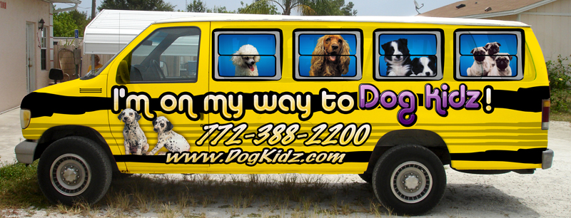 Dog Kidz Van