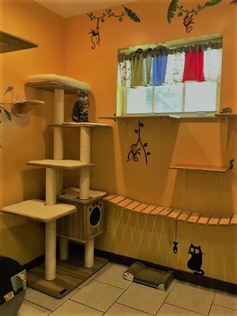 Deluxe Cat Room
